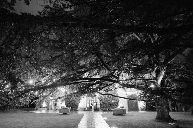scottish-irish wedding